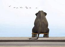 Успех начинается с удовольствия от одиночества