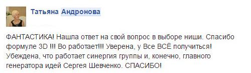 Татьяна Андронова о работе Сергея Шевченко